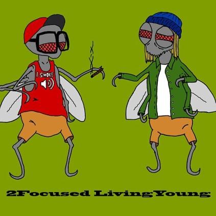 2fly-flies.jpg